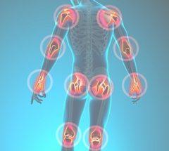 ProOrtho Pain Management Specialties